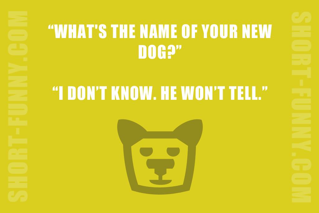 Secretive Dog Joke