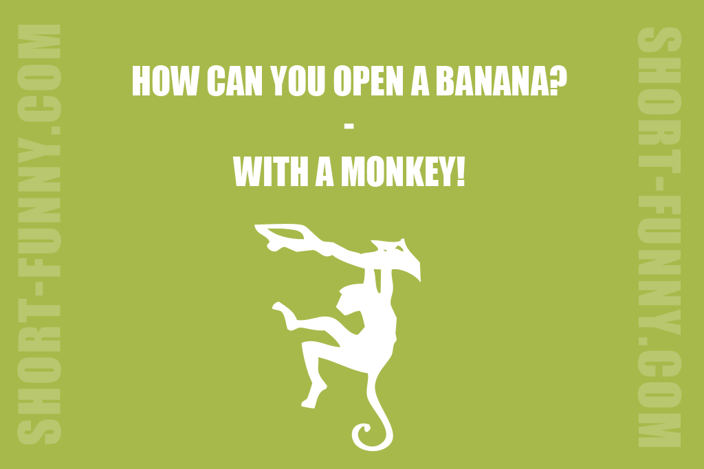 Funny Monkey Solution
