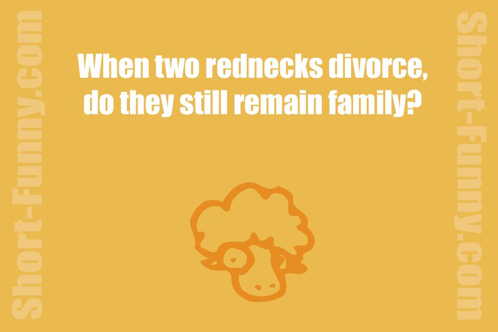 Humorous Redneck Domestic Mystery