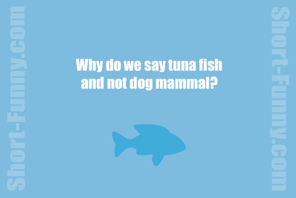 Tuna Fish Joke